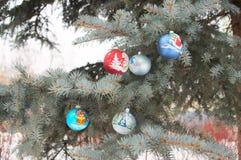 Christmas decorations on pine Stock Photography