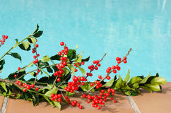 Christmas decorations in the pool. A different Christmas, we change the snow and cold Stock Images