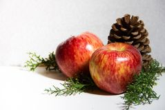 Christmas decorations with red apples pineapples and pine trees white background Stock Images