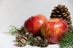 Christmas decorations with red apples pineapples and pine trees white background Stock Image
