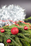 Christmas Decorations. Red globes on a Christmas tree branch Royalty Free Stock Images