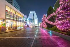 Christmas decorations at Shinjuku train station of Tokyo, Japan. TOKYO, JAPAN - NOVEMBER 14, 2016: Christmas decorations at Shinjuku train station of Tokyo Royalty Free Stock Photos