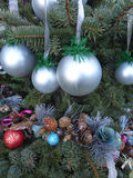Christmas decorations, silver balls and cones garland on Christmas tree. Branches of Christmas tree decorated with balls and pine cones Stock Images