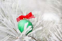 Christmas decorations on a tree in frost Stock Photography