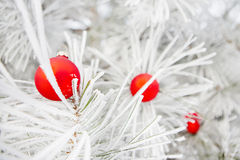 Christmas decorations on a tree in frost Royalty Free Stock Photography