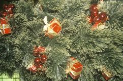 Christmas Decorations on Tree, Marshall Fields Department Store, Chicago, Illinois Stock Images