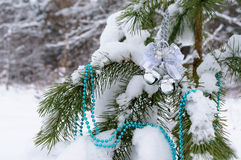 Christmas decorations on the tree in winter wood. Royalty Free Stock Photos