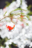 Christmas Decorations. Winter scene decoration on a Christmas tree branch Stock Photo