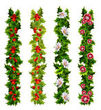Christmas decorative belts made of holly and flowers Royalty Free Stock Image