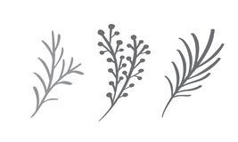 Christmas decorative branch elements design floral leaves in scandinavian style. Vector handdraw illustration for xmas. Greeting card royalty free illustration