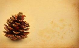 Christmas decorative cone Royalty Free Stock Photo