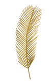 Christmas decorative golden feather. Isolated on white background Stock Photo