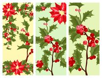 Christmas decorative leaves holly card design branches with winter red berries evergreen floral plant vector Royalty Free Stock Photography