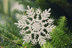 Christmas decorative silver snowflake on a fir tree Royalty Free Stock Photography