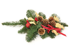 Christmas Decorative Spray Royalty Free Stock Photo