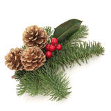 Christmas Decorative Spray Stock Images