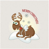Christmas deer Stock Images