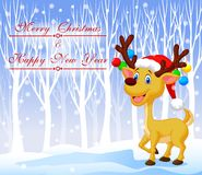 Christmas deer cartoon wearing red hat with winter background Stock Photos