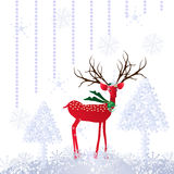 Christmas deer Stock Photo