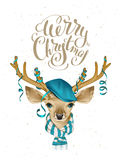 Christmas deer head in blue fashionable hat and striped scarf.  Royalty Free Stock Image
