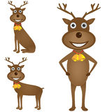 Christmas deer set Royalty Free Stock Images