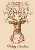 Christmas deer sketch Royalty Free Stock Photos