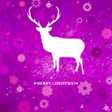 Christmas deer tempate card. EPS 8 Royalty Free Stock Photos
