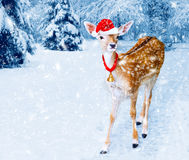 Christmas deer in winter forest with snow fall. Christmas white-tailed, baby deer with Santa Hat in the winter forest with snow fall. Christmas card Royalty Free Stock Images