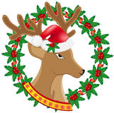 Christmas deer wreath of holly berries Stock Photo