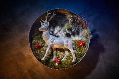 Christmas deers with lights at night stock images
