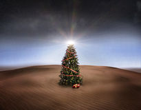 Christmas desert Royalty Free Stock Photo