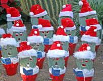 Christmas in the desert. Royalty Free Stock Photo
