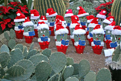 Christmas in the desert. Royalty Free Stock Images