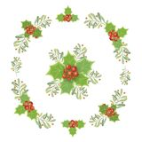 Christmas design composition of poinsettia, mistletoe, fir branc. Hes, cones, holly and other plants. Cover, invitation, banner, greeting card. Vector Stock Photography
