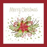 Christmas design composition of poinsettia, mistletoe, fir branc. Hes, cones, holly and other plants. Cover, invitation, banner, greeting card. Vector Stock Photos