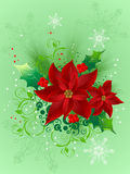 Christmas  design with a decorative flowers Royalty Free Stock Photo