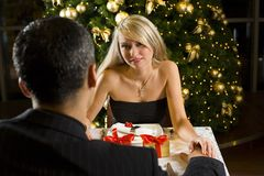 Christmas Dinner Royalty Free Stock Images