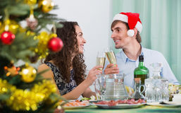 Christmas dinner at home young  family. Christmas dinner at home young happy family Royalty Free Stock Image