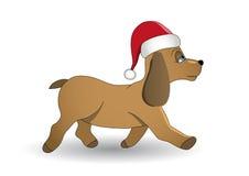 Christmas dog Stock Image
