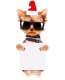 Christmas dog as santa with banner Stock Photography