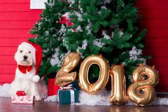 Christmas Dog as symbol of new year Royalty Free Stock Photos