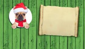 Christmas dog Royalty Free Stock Photo