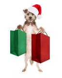 Christmas Dog Holding Shopping Bags. Cute dog standing up wearing a Christmas Santa Claus hat and holding a green and a red large shopping or gift bags royalty free stock photos