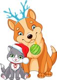 Christmas Dog with Cat. Christmas dog with kitten on white background Stock Photography