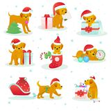 Christmas dog pet vector animal puppy in santa hat on Xmas or Happy New year holiday celebration with gift presented to. Doggy isolated on white background Royalty Free Stock Photography