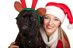 Christmas dog with presents Royalty Free Stock Images