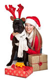 Christmas dog with presents Royalty Free Stock Photography