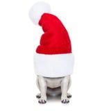 Christmas dog and santa claus Stock Image
