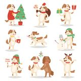 Christmas dog vector cute cartoon puppy characters illustration couple pets doggy different Xmas celebrate poses. In Santa Red Hats vector illustration