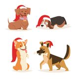 Christmas dog vector cute cartoon puppy characters illustration home pets doggy different Xmas celebrate poses in Santa Stock Images
